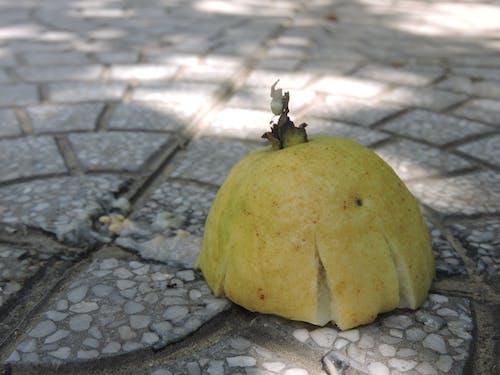 Foto d'estoc gratuïta de trái ổi màu vàng