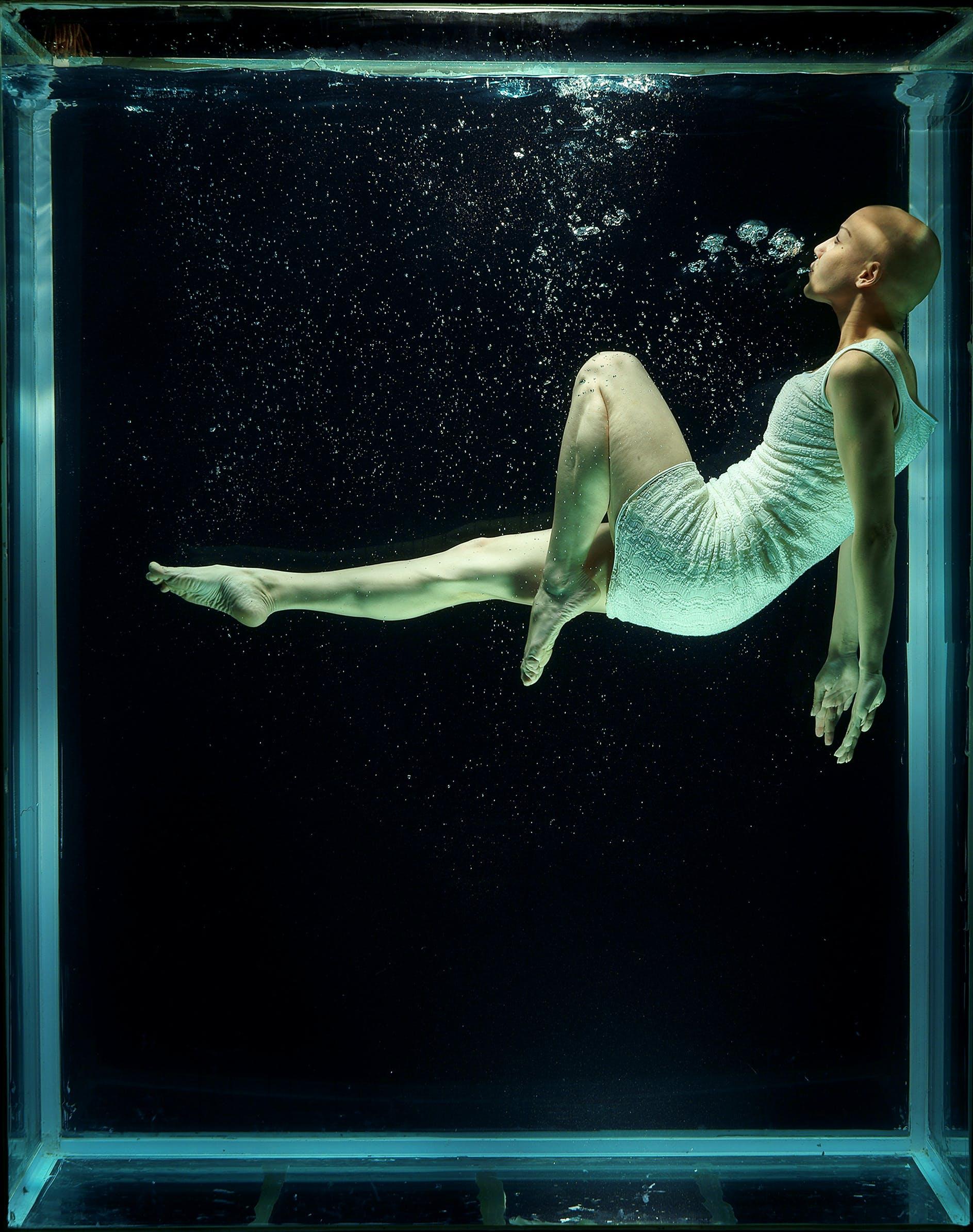 Základová fotografie zdarma na téma akvárium, fantazie, holka, osoba