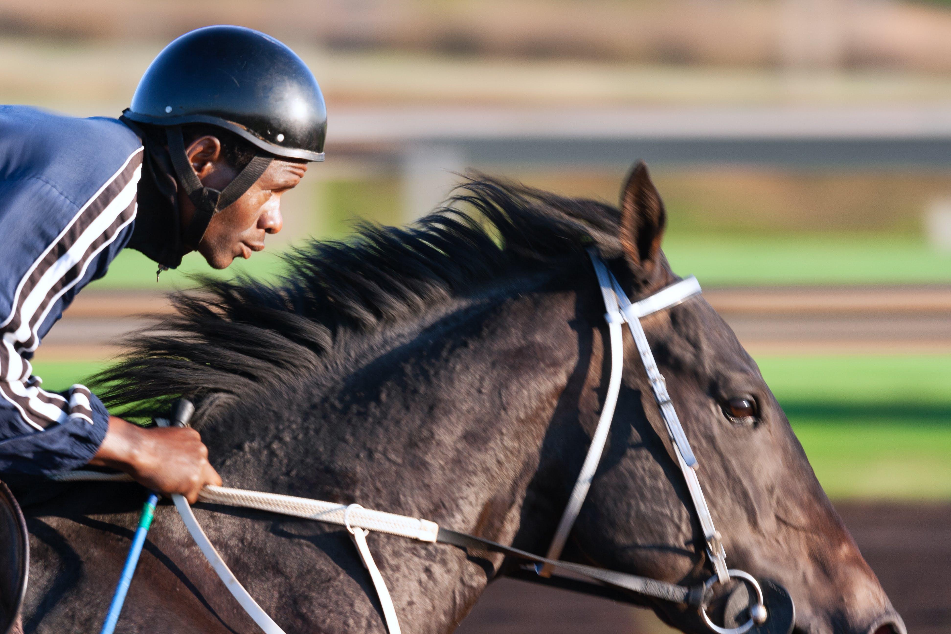 Tilt Shift Focus Photography of Man Riding Horse