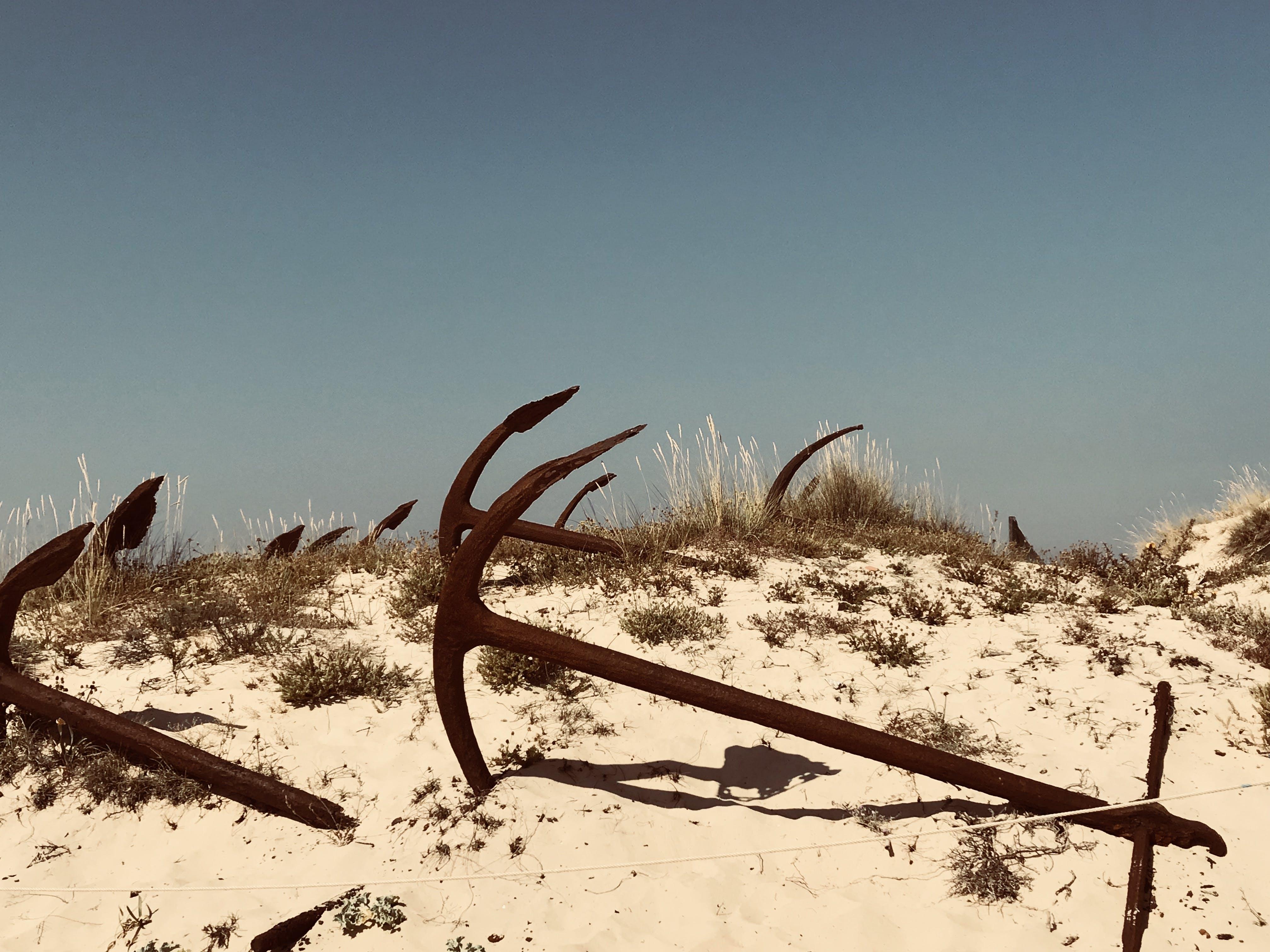 Free stock photo of anchor, beach
