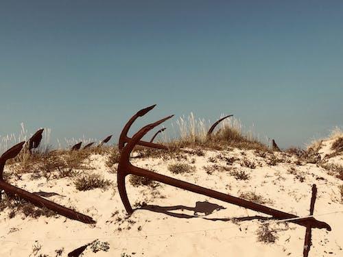 Ảnh lưu trữ miễn phí về bờ biển, mỏ neo