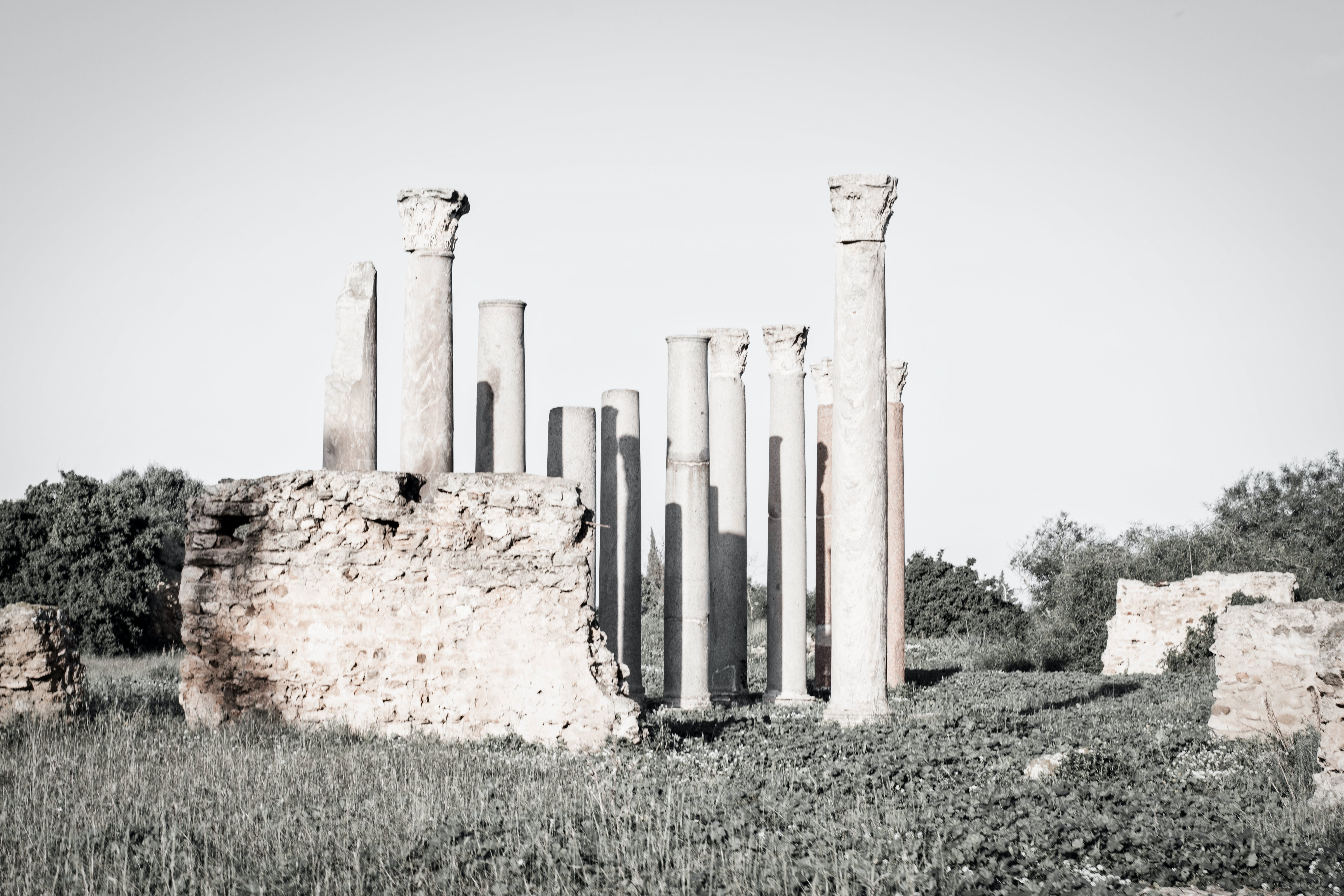 Free stock photo of black and white, carthage, historic, historical