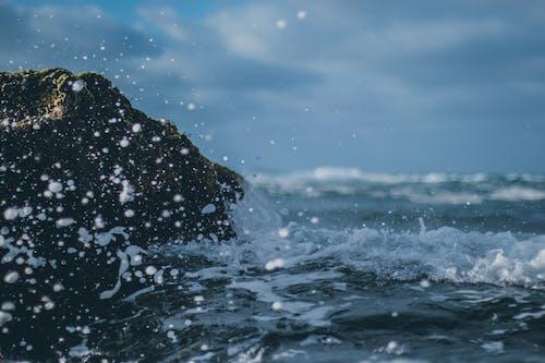 Gratis arkivbilde med bevegelse, bølger, forkjølelse, hav