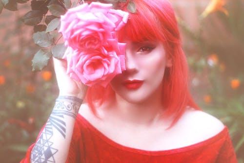 Gratis lagerfoto af ansigtsbehåring, lyserød blomst, lyserød rose, lyserøde roser