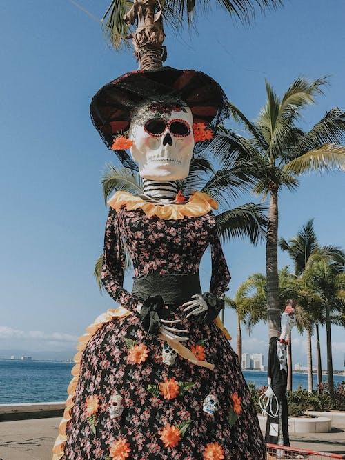 Imagine de stoc gratuită din aspect, cocotieri, craniu, frunze de palmier