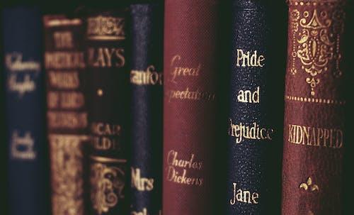 Δωρεάν στοκ φωτογραφιών με jane austen, vintage, ανάγνωση, βιβλία