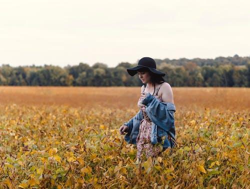 下田, 乾草地, 女人, 女孩 的 免費圖庫相片