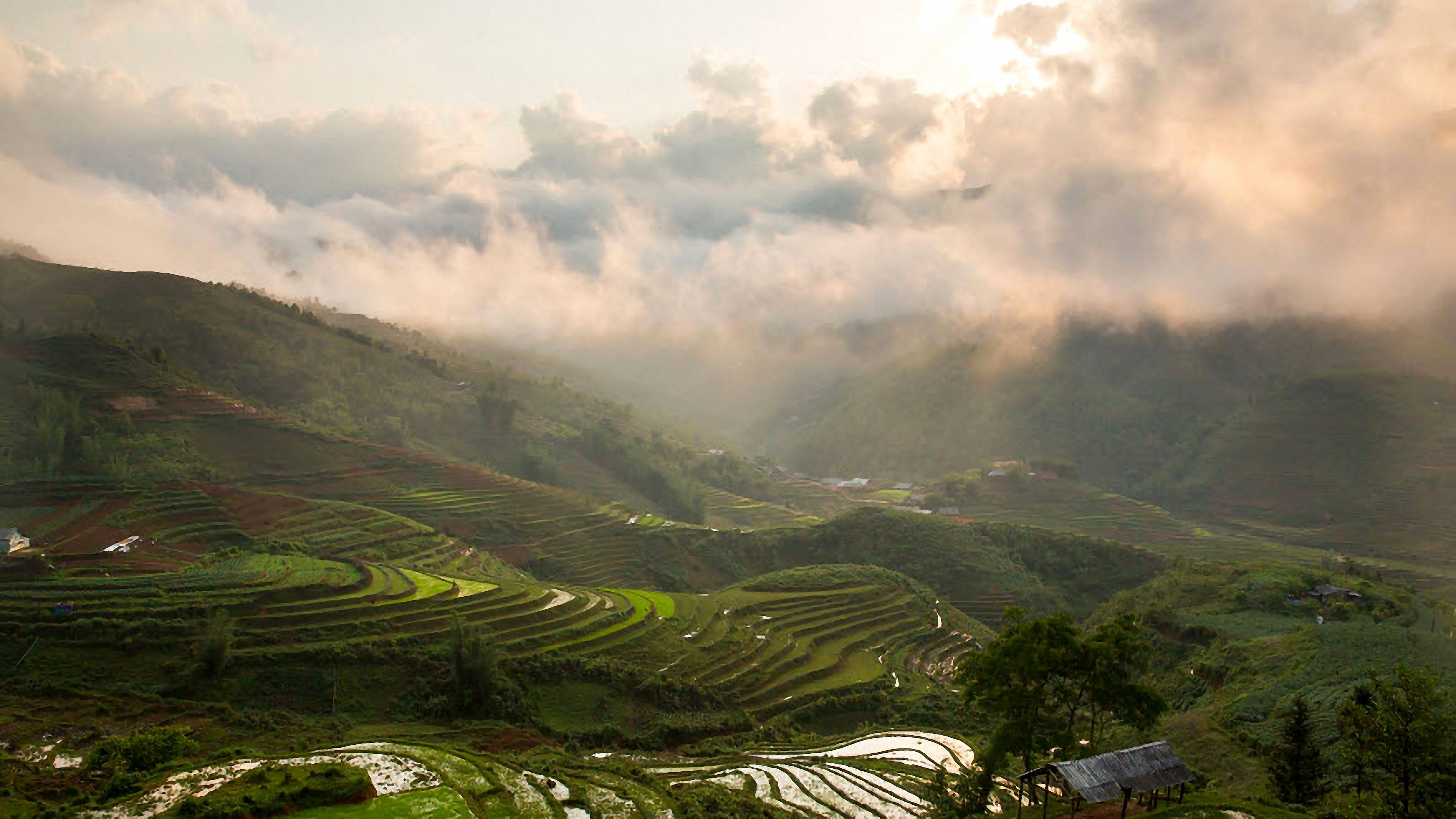 amanecer, campos de cultivo, colina