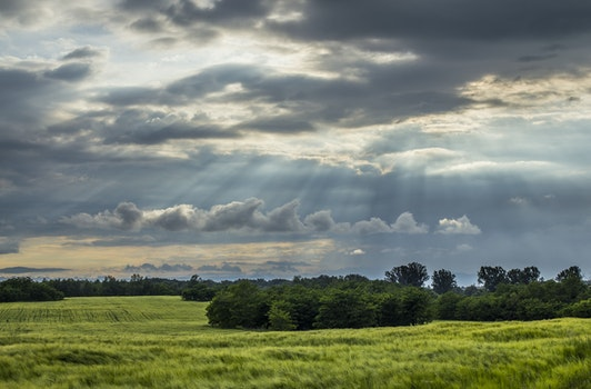 Sun Raise from the Sky over the Green Fields