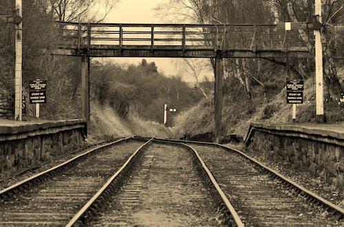 Free stock photo of m, monochrome photography, railways