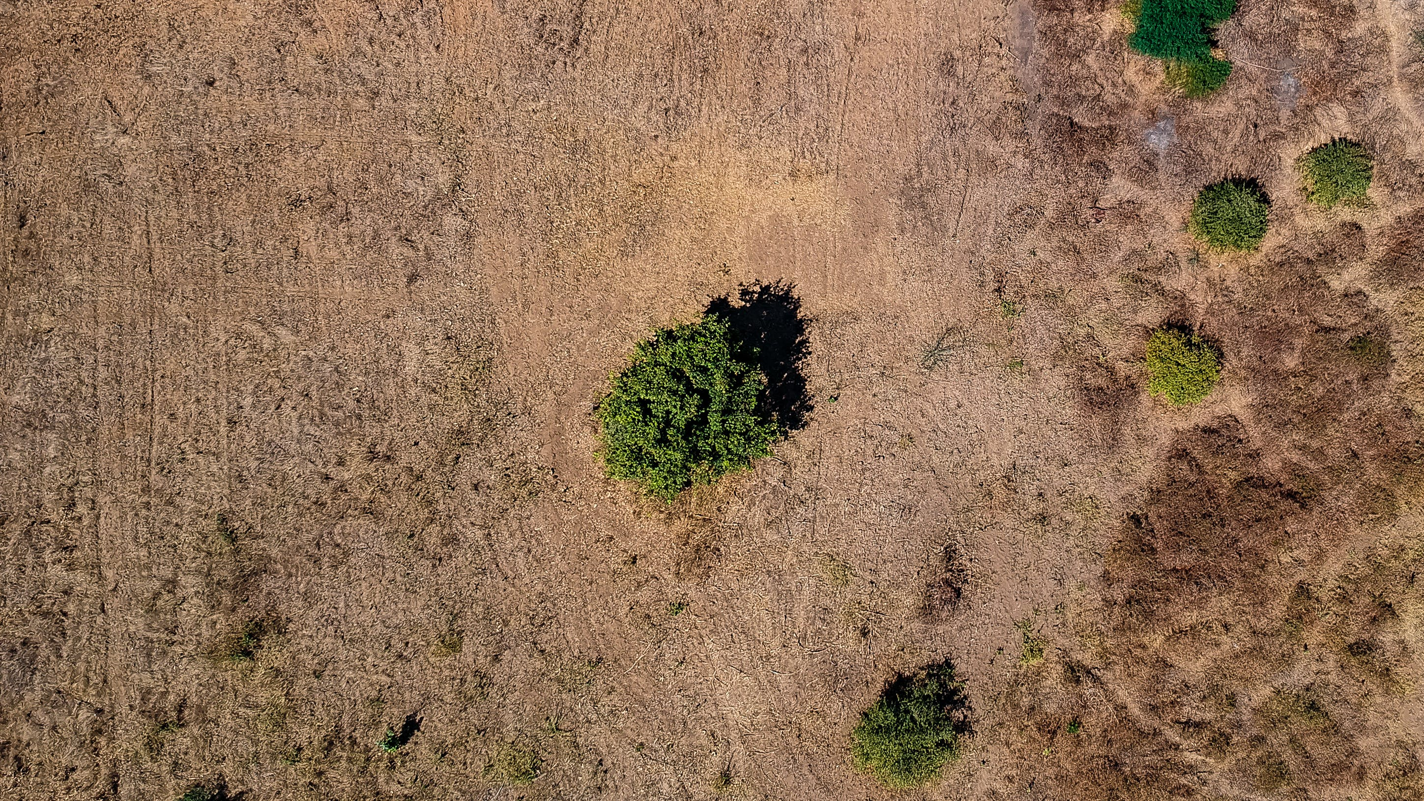 Free stock photo of aerial, aerial photography, aerial shot, aerial view