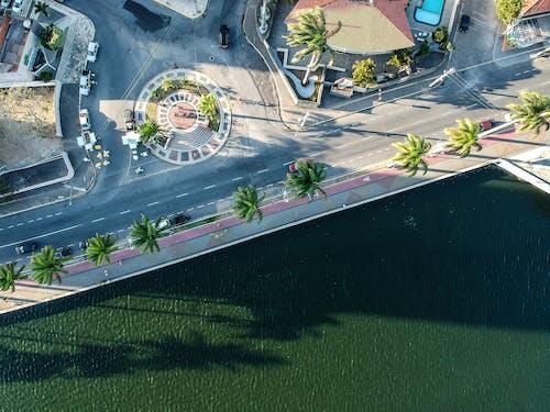 Бесплатное стоковое фото с Аэрофотосъемка, вид с квадрокоптера, вода, деревья