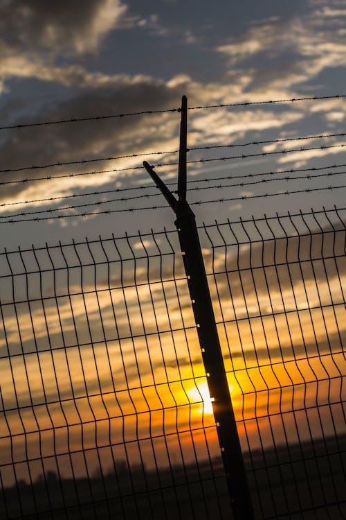 Foto profissional grátis de alvorecer, amanhecer, arames farpados, aurora