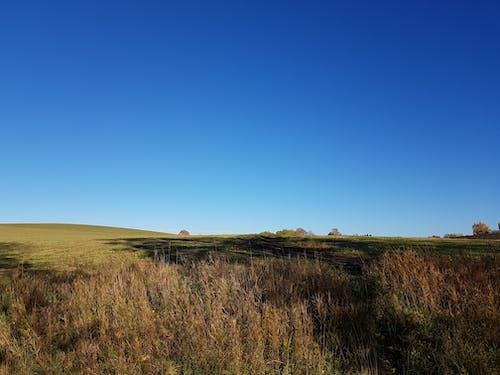Безкоштовне стокове фото на тему «блакитне небо, кольори осені, синій»