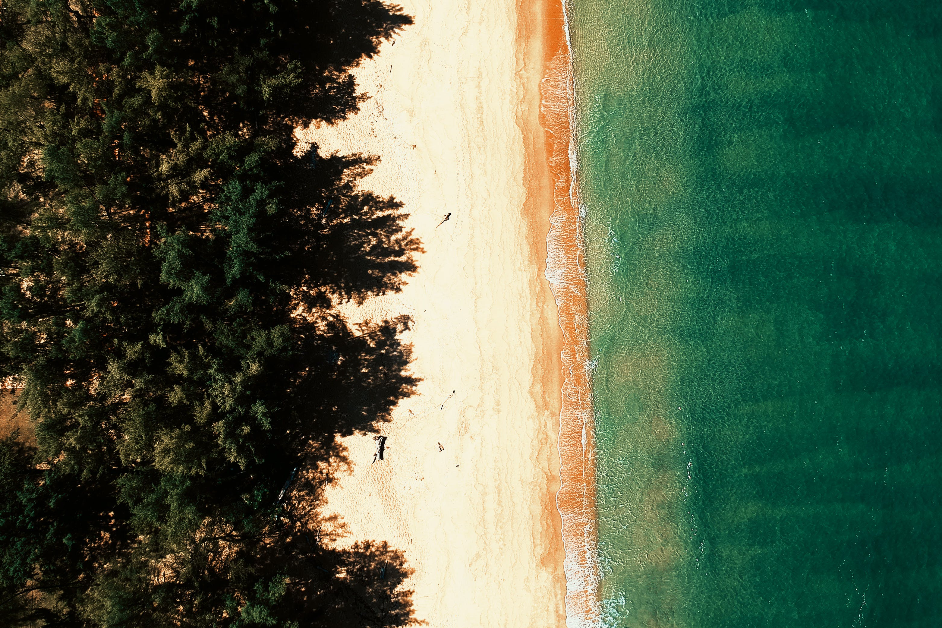 Aerial Photography of Seashore