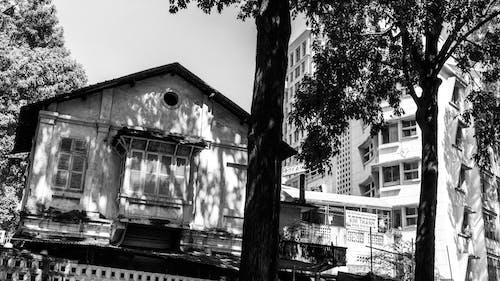 Gratis lagerfoto af gammel by