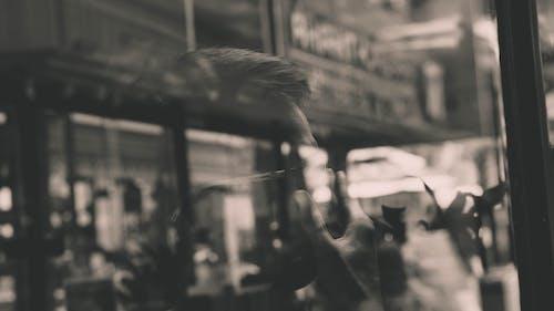Gratis lagerfoto af refleksion