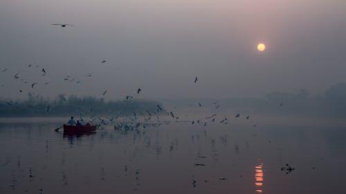 Бесплатное стоковое фото с апельсин, восход, закат, зима