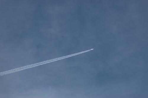 藍天, 飛機 的 免费素材照片