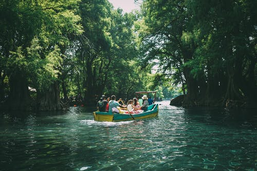 People in Boat Surrounded by Trees