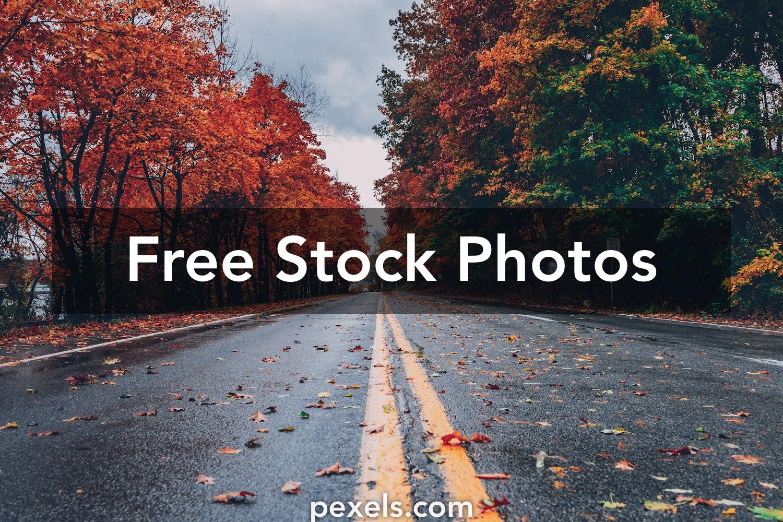 1000+ Great Green Screen Photos Pexels · Free Stock Photos