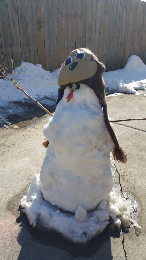 Free stock photo of snow man