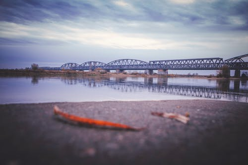 Ingyenes stockfotó építészet, híd témában