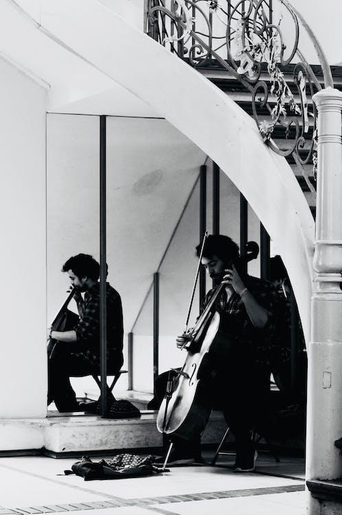 cello, drinnen, einfarbig