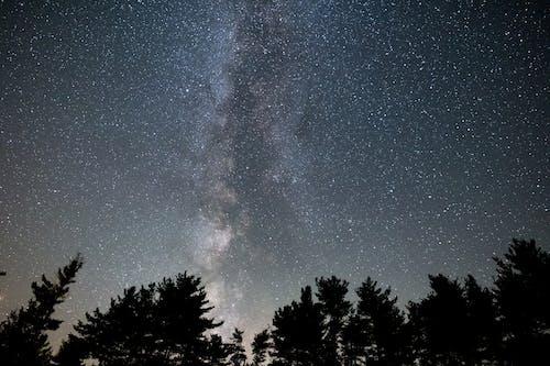 açık hava, ağaçlar, akşam, astronomi içeren Ücretsiz stok fotoğraf