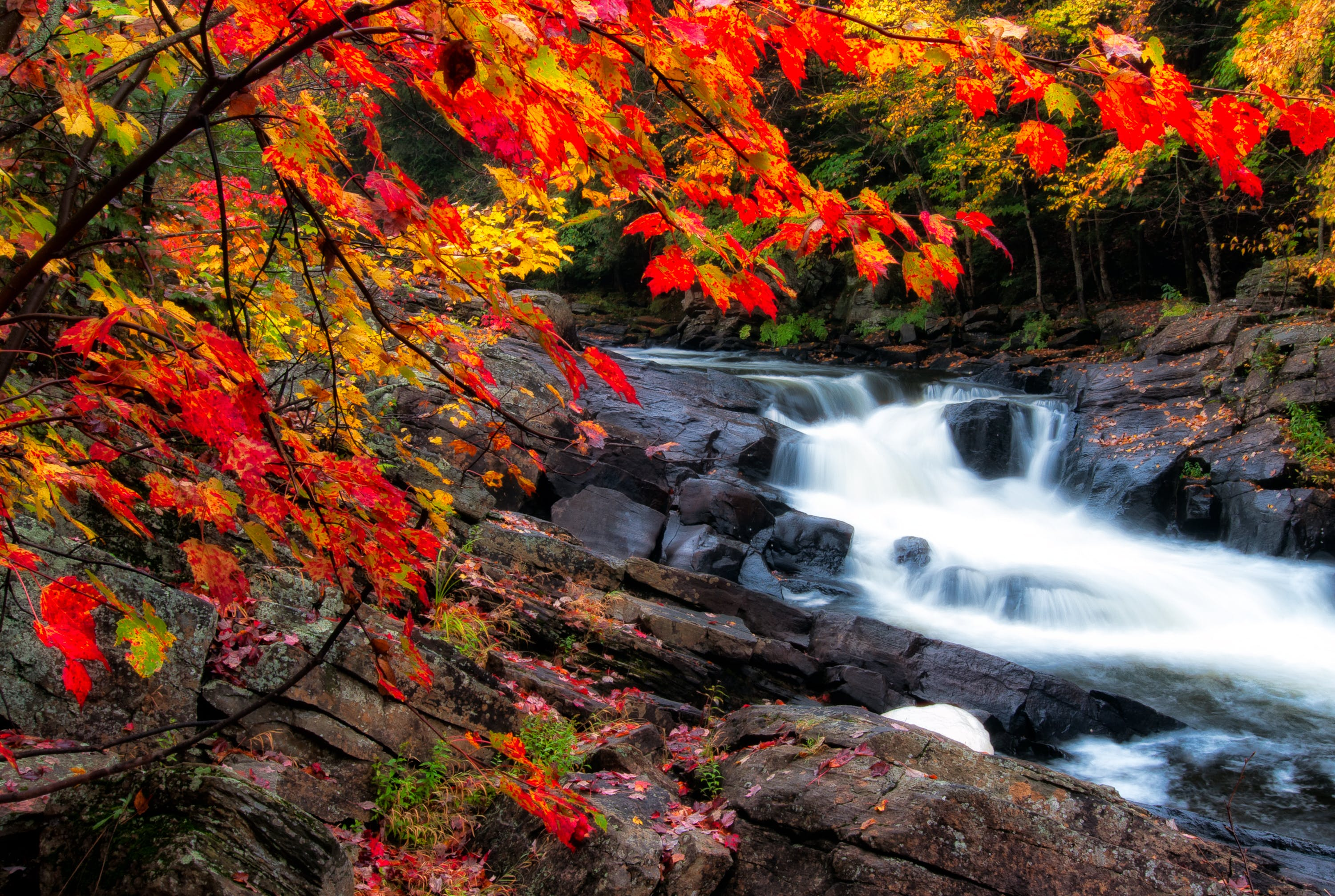 Photo of Waterfalls During Fall Season