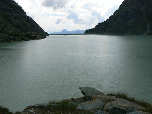 Immagine gratuita di acqua, alba, baia, erba