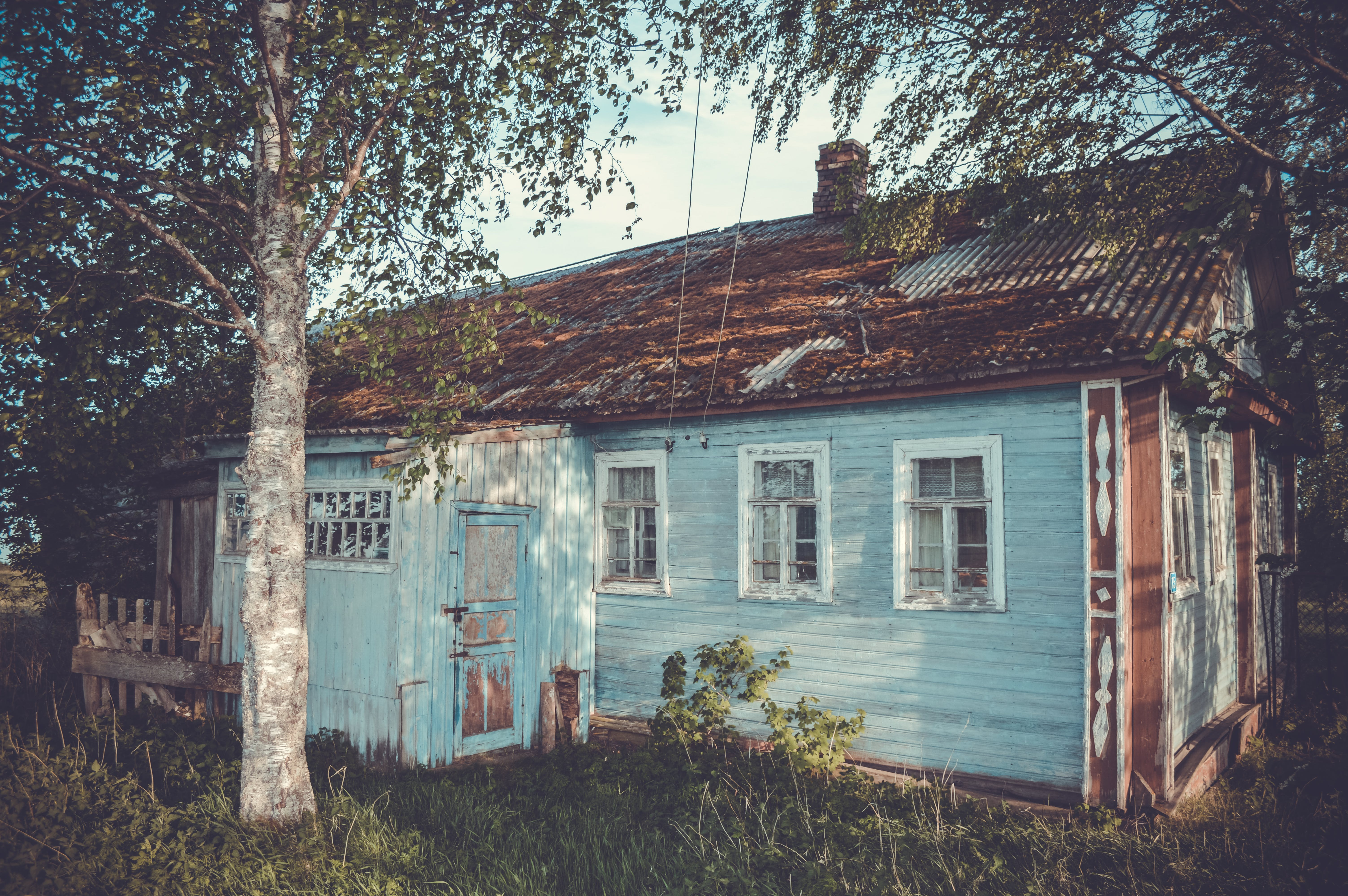 Photo of Teal Wooden Cottage Under Trees
