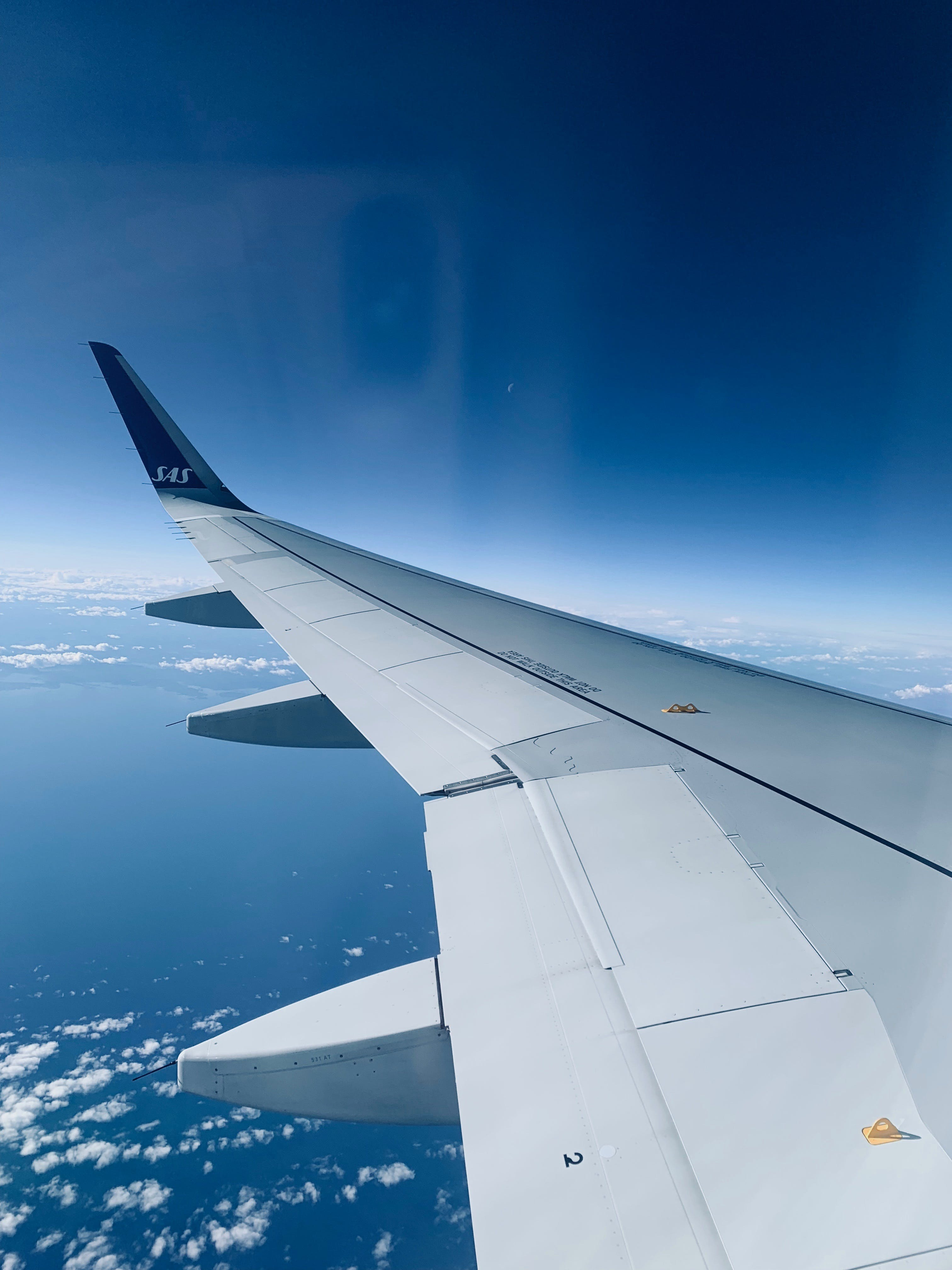 Free stock photo of flying