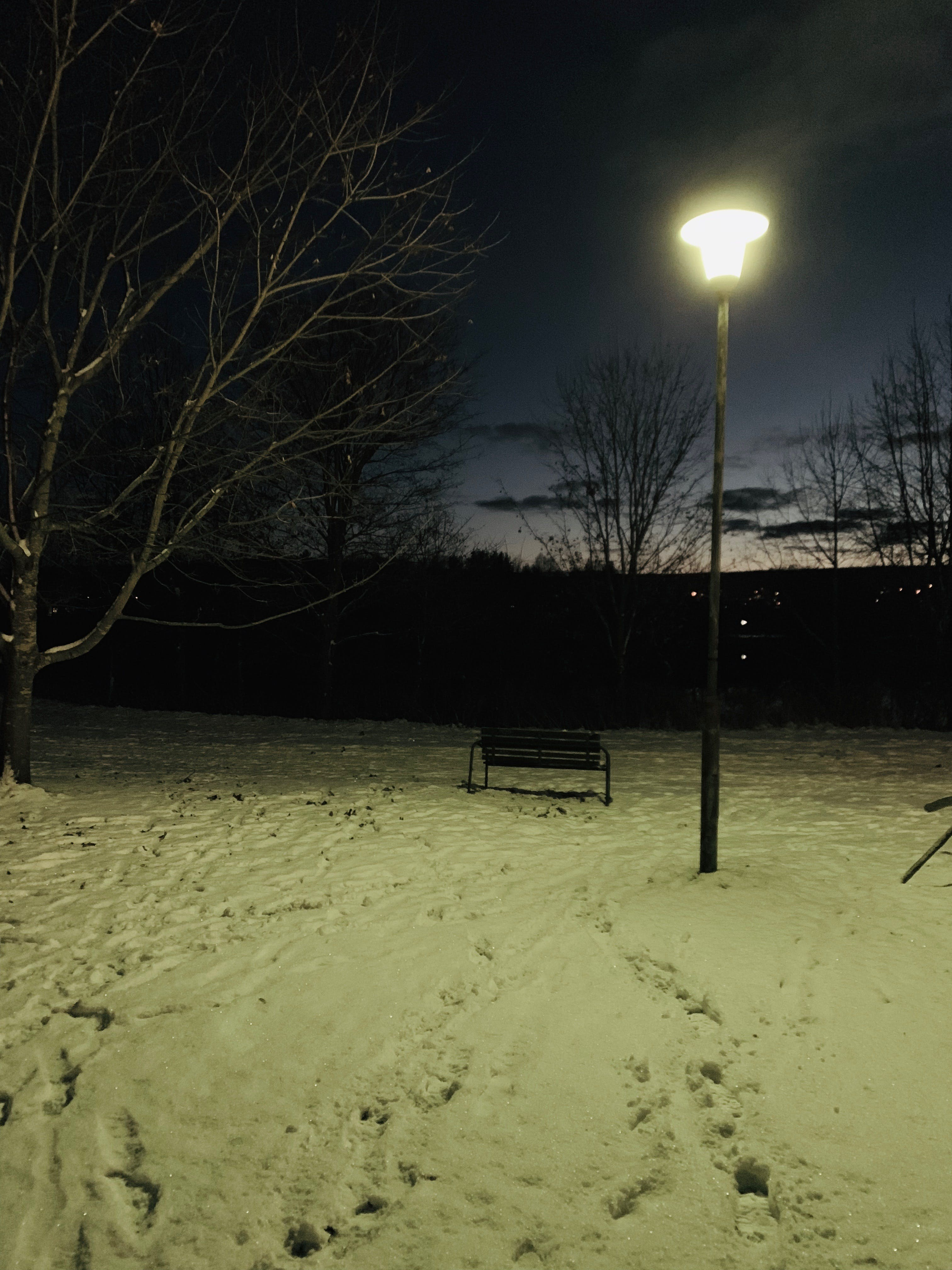 Free stock photo of night, autumn