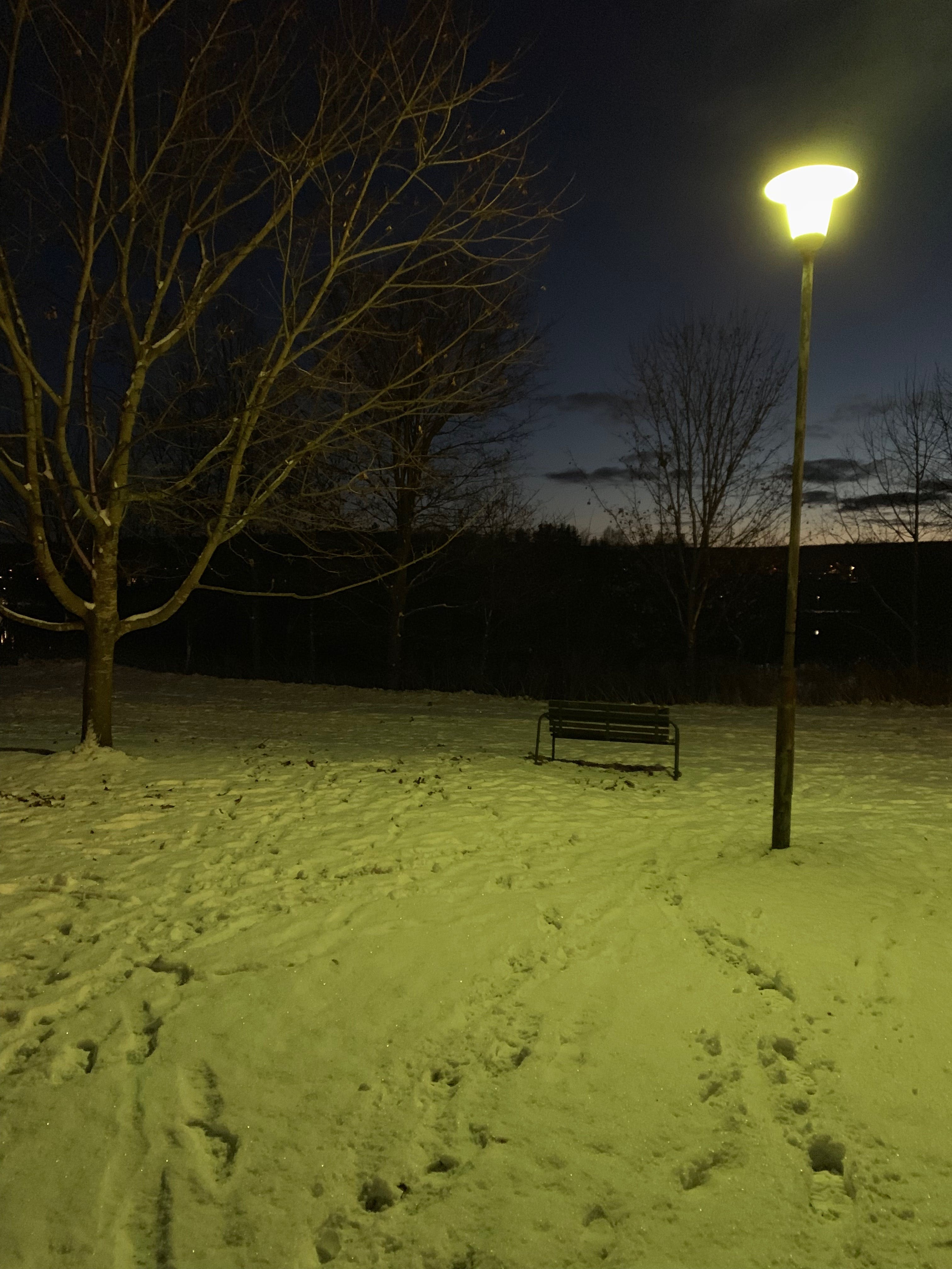 Kostnadsfri bild av #höst, #natt