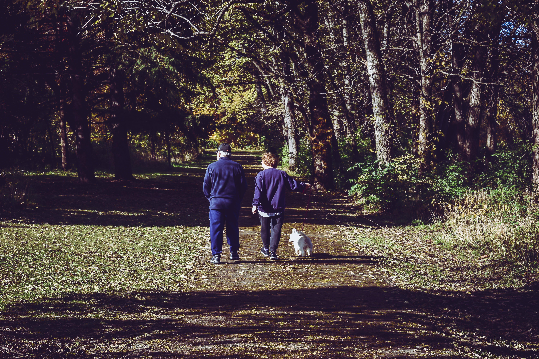 Two Man Walking on Road Near Trees