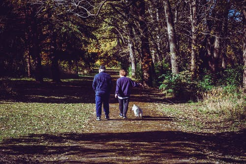 Two Man Walking on Road Near Trees