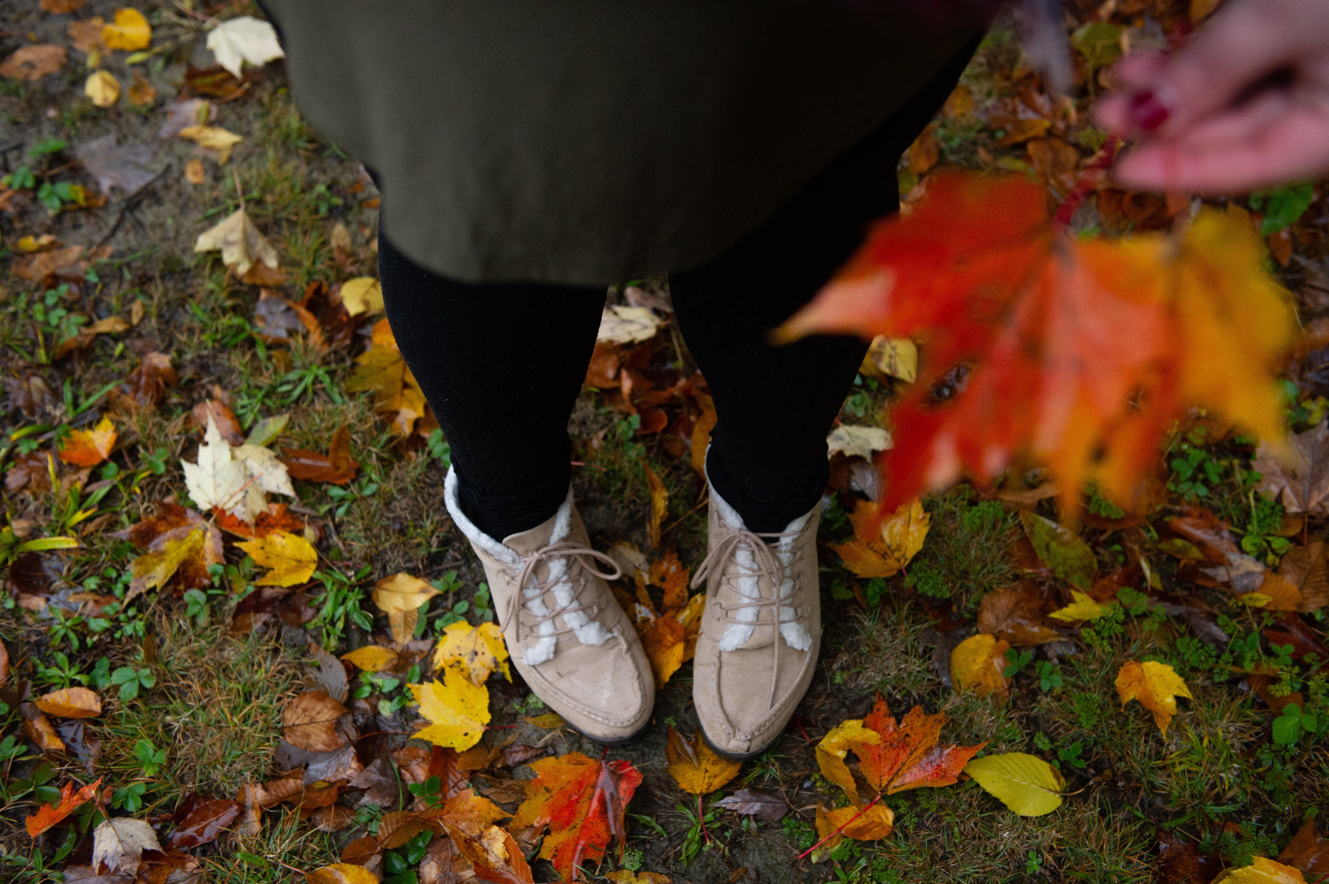 Person Standing on Fallen Leaves