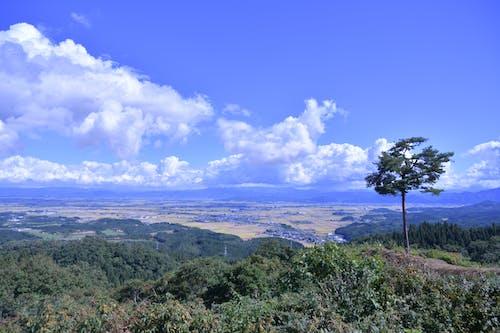 Ingyenes stockfotó Japán, Látvány, szép kilátás, természet témában