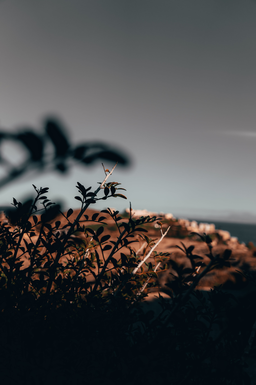Free stock photo of landscape, field, sony, greece