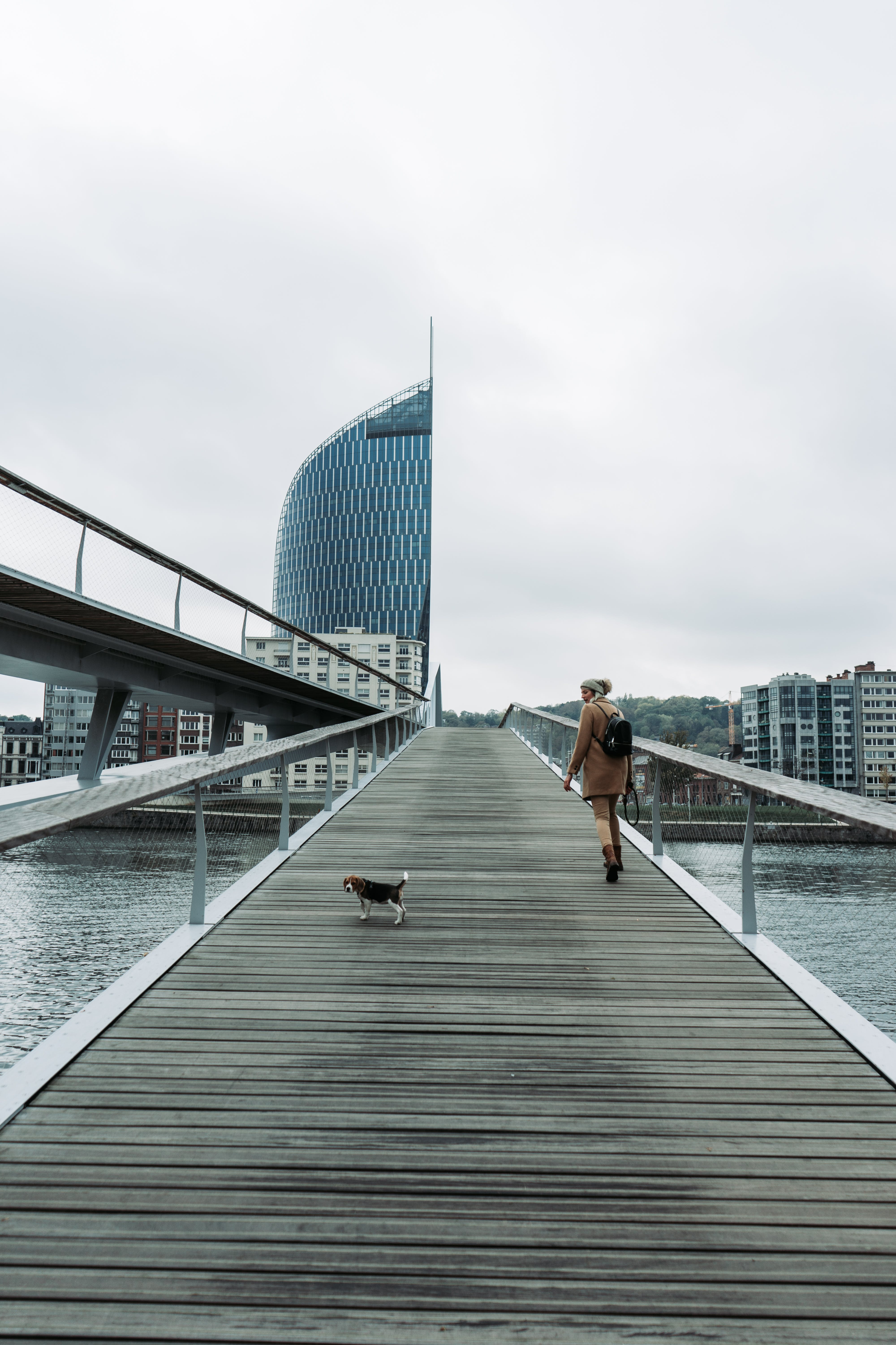 Woman Walking on Bridge With Tricolor Beagle