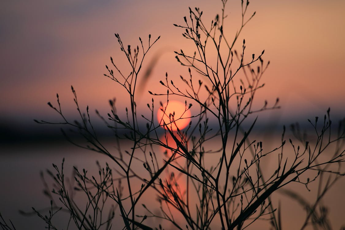 gryning, Sol, solnedgång