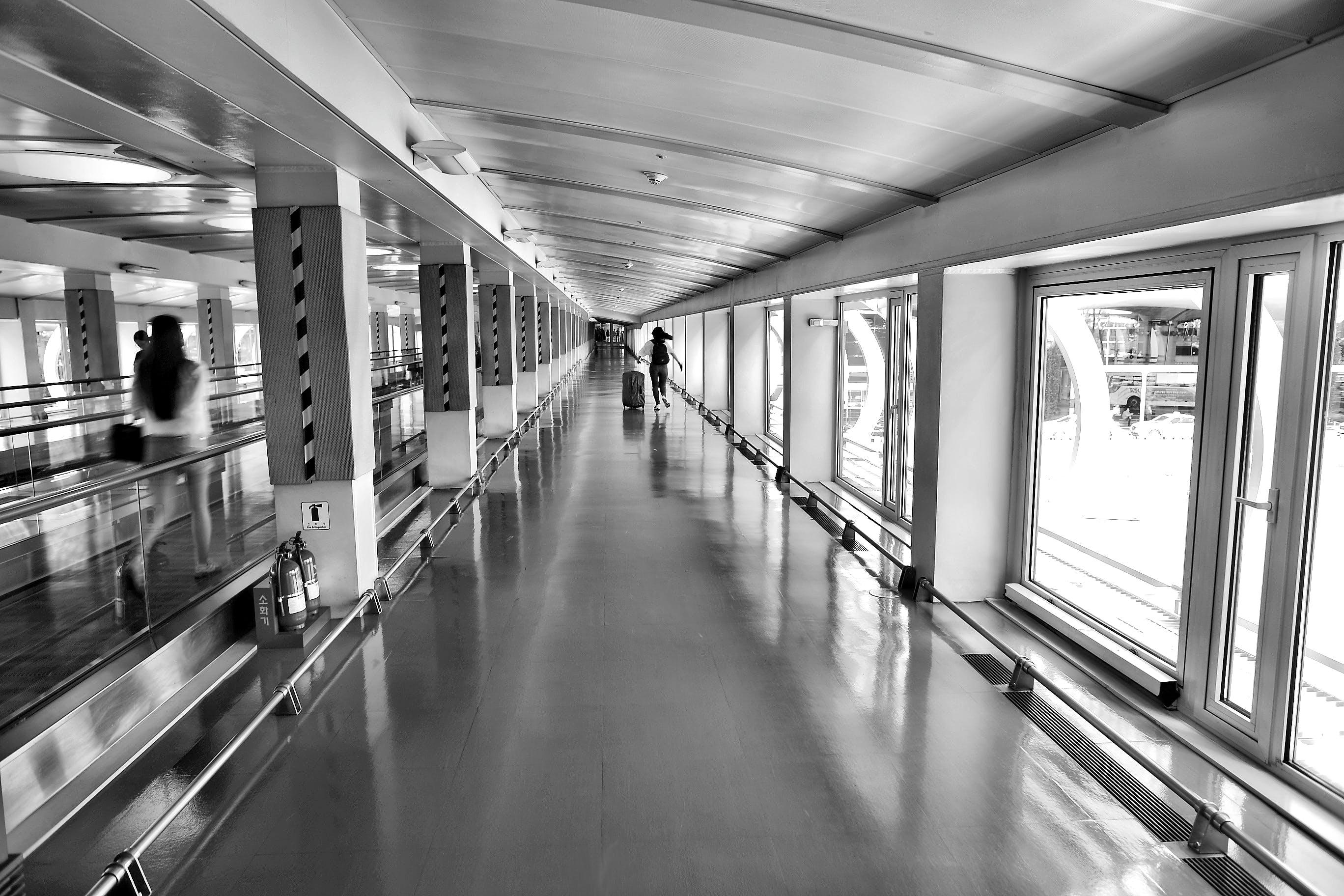 Imagine de stoc gratuită din adâncime de câmp, aeroport, arhitectură, bandă rulantă