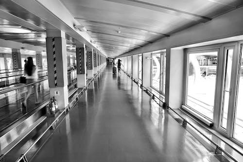 Immagine gratuita di aeroporto, architettura, bicchiere, corridoio