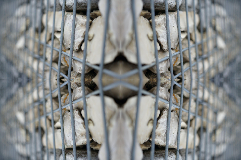 Free stock photo of art background, granit, mirror image, stone
