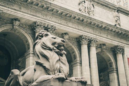 Immagine gratuita di archi, architettura, arte, bianco e nero