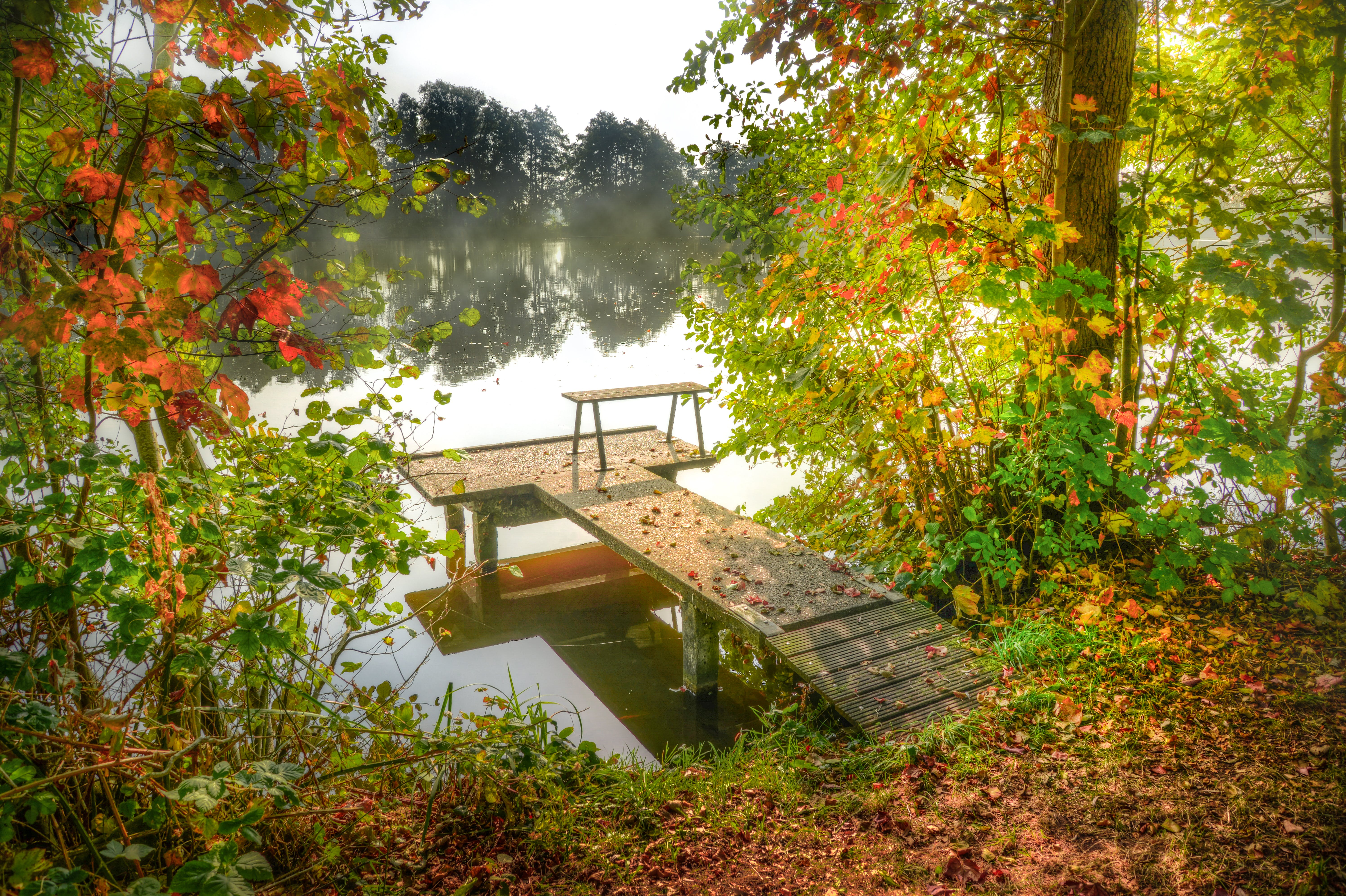 Free stock photo of autumn, beautiful, fishing, fishing spot