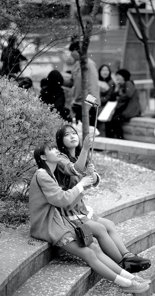 Imagine de stoc gratuită din alb-negru, femei, fete, fotografiază