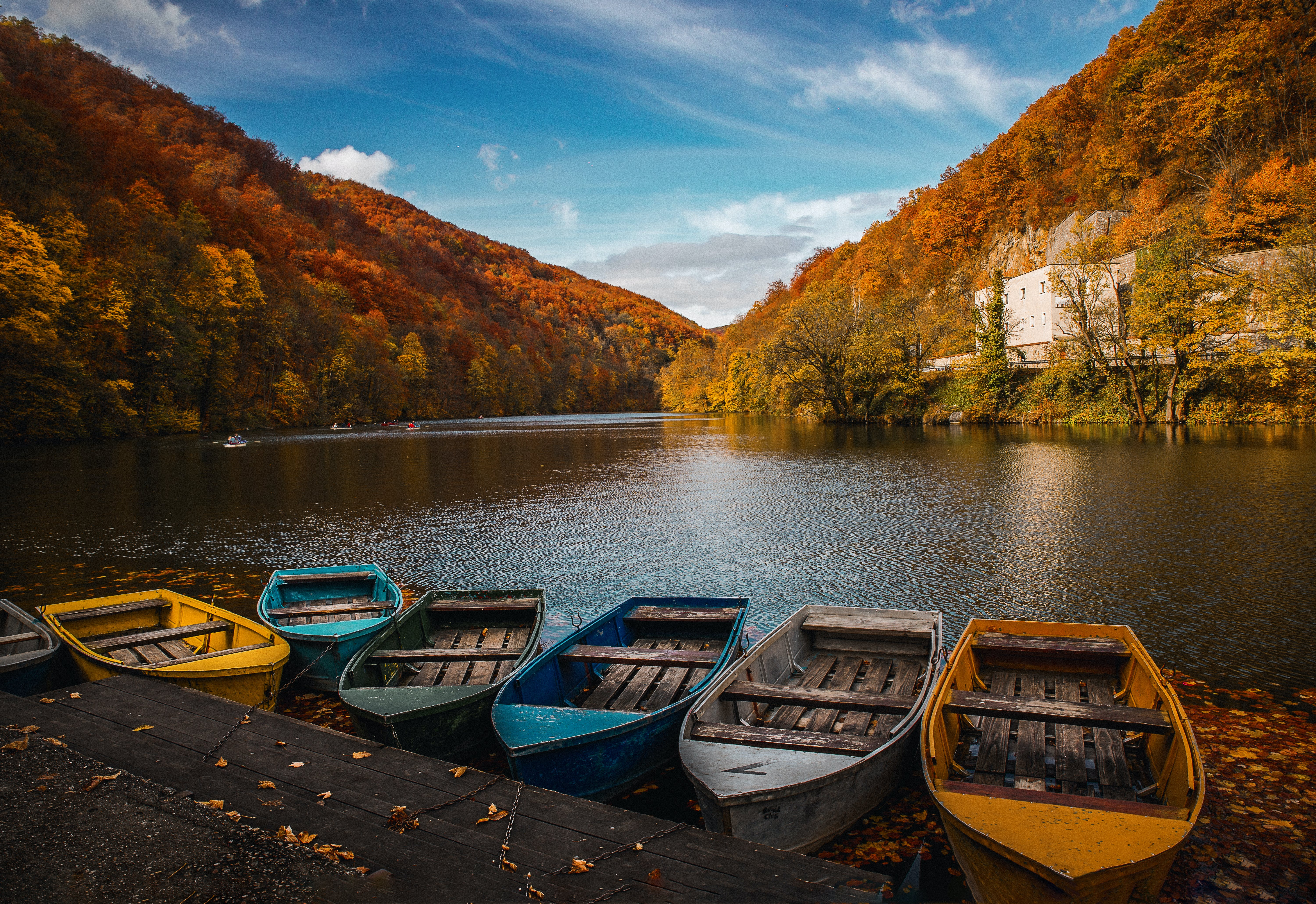 Six Assorted Colored Row Boats