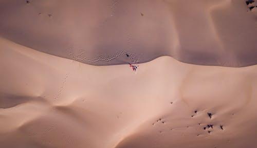 Picturesque sandy dunes in desert terrain